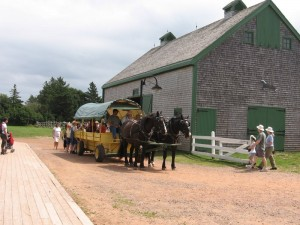 We spent a few minutes in the barn before boarding the 8-minute wagon ride