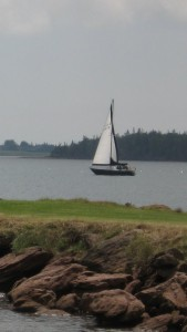 Another sail boat on the gray sea